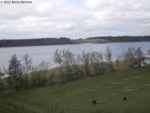 20120405-04 - Schaalseeblick vom Ausguck in Dargow