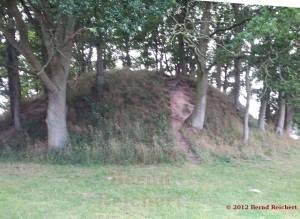20120808-04 - Hügelgrab bei Woorke