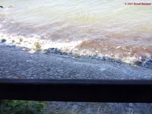 20120809-134310 - Blick vom Königssteig auf den Strand von Kap Arkona