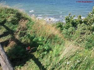 20120809-141152 - Blick vom Gell Ort auf den Strand