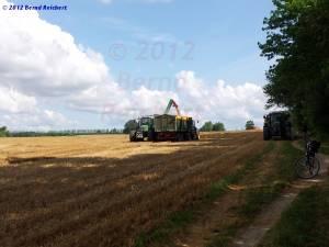 20120812-07 - Verladen des frisch gedroschenen Korns