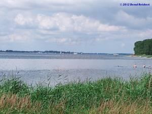 20120812-13 - Grabow (Halbinsel Zudar). Blick am Südwestufer über den Strelasund zur Glewitzer Fähre