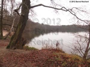 20121201-27 - Südwestufer des Kleinen Müggelsees